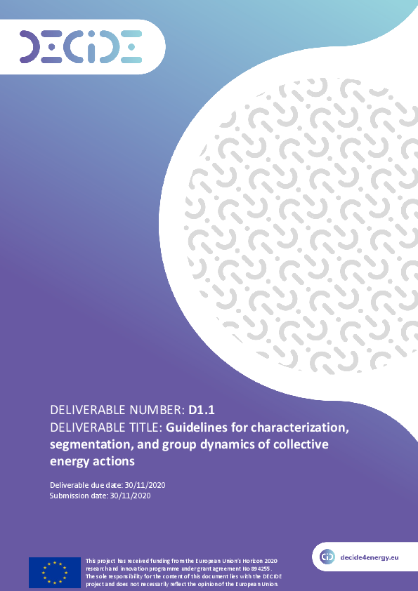 Guidelines for characterization, segmentation, and group dynamics of collective energy actions